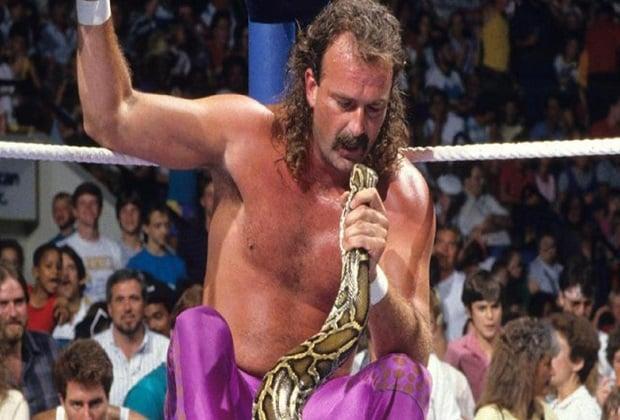 Jake The Snake Robert wrestling legend