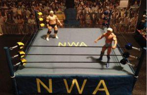 NWA legends in ring
