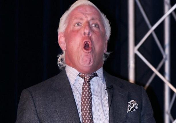 Ric Flair WCW WWE