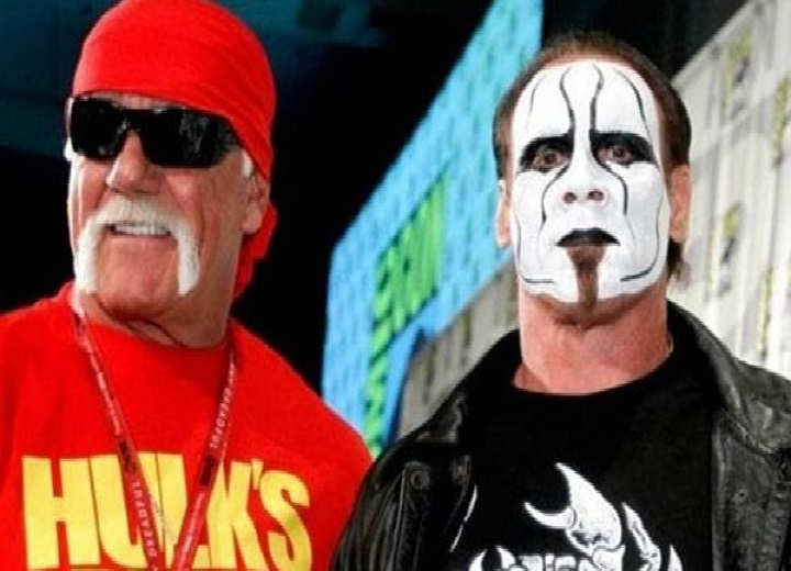 Hulk Hogan and Sting