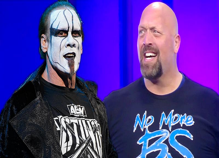sting and bigshow